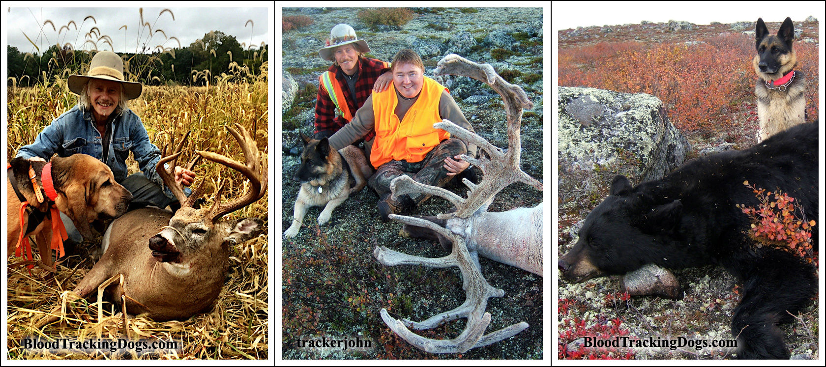 Whitetail Fix - Chuck Weldon, Caribou - Mike Czora, Black Bear Billy Putzer